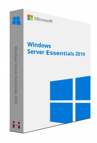 Microsoft Windows Server 2019 Essentials 1 Server